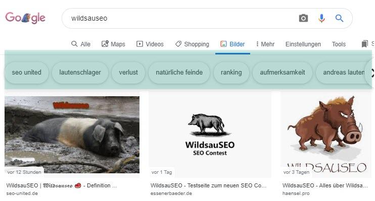 Wildsauseo Assoziationen Bildersuche